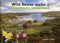 Wild Flower Walks of Southern Lakeland