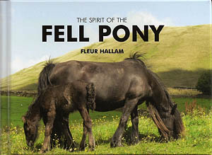 The Spirit of the Fell Pony