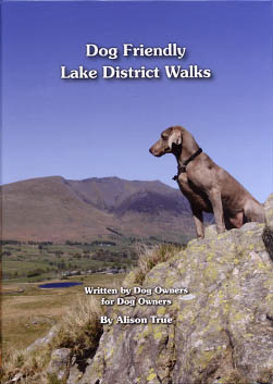 Dog Friendly Lake District Walks