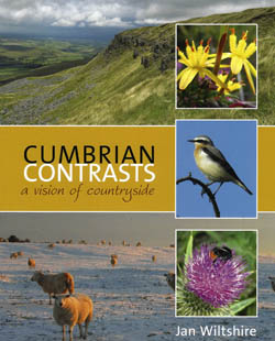 Cumbrian Contrasts: A Vision of Countryside