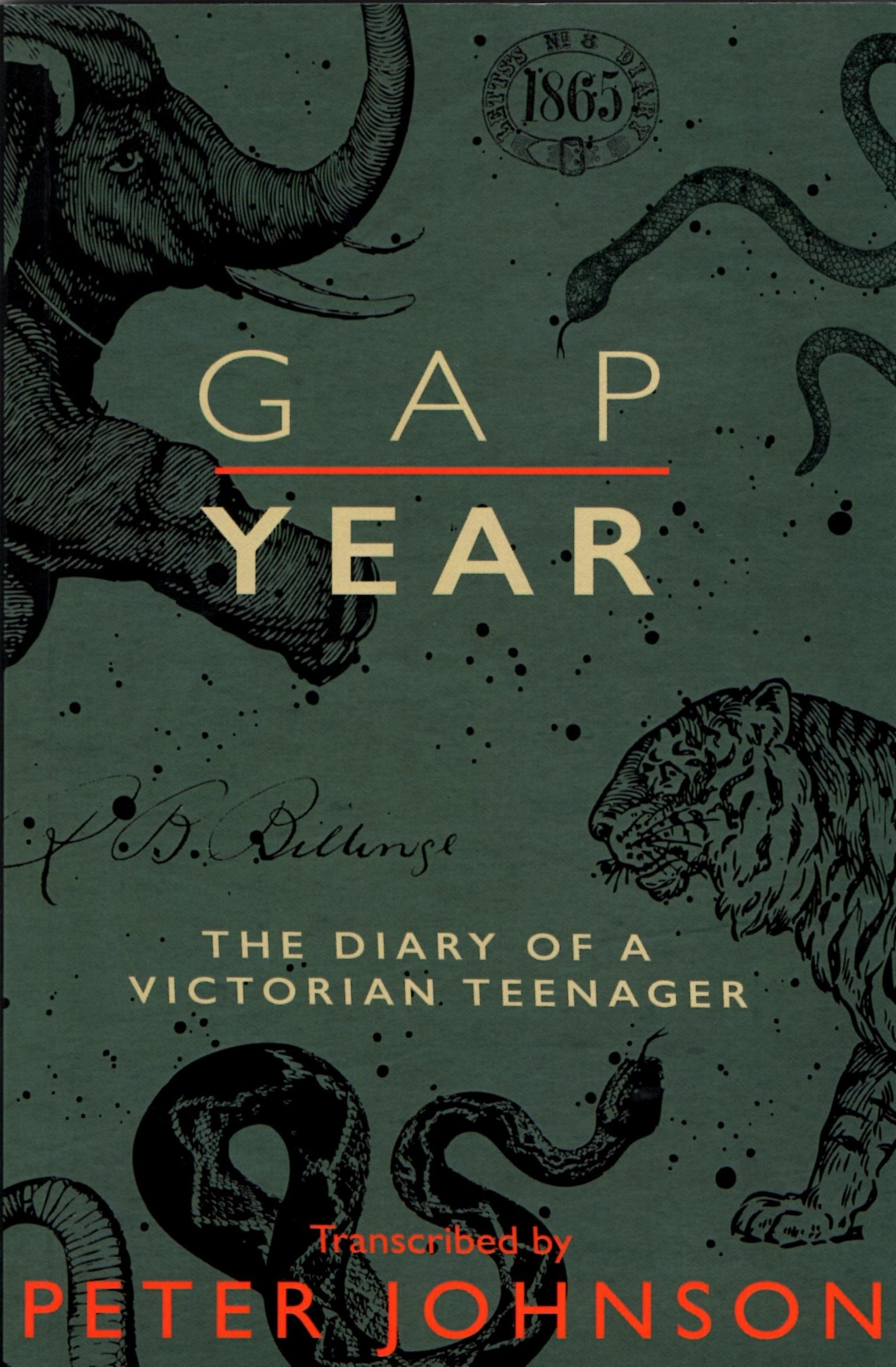 Gap Year: The Diary of a Victorian Teenager