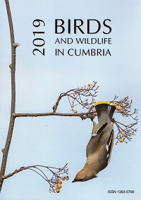 2019 Birds and Wildlife in Cumbria