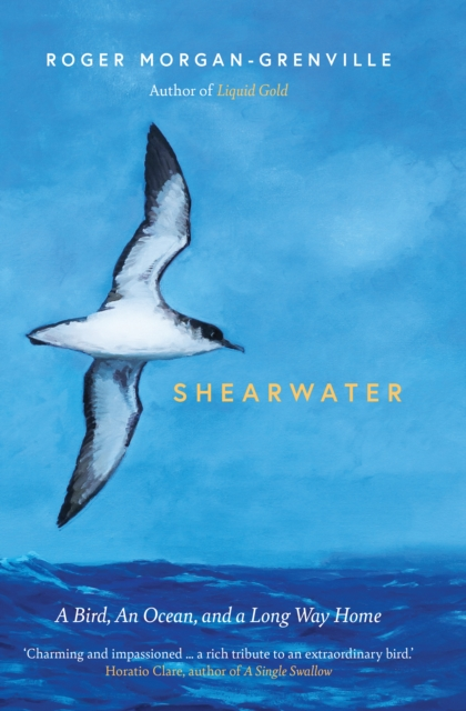 SIGNED BOOKPLATE EDITION - Shearwater : A Bird, an Ocean, and a Long Way Home